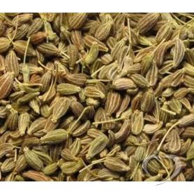 Анис обыкновенный / Pimpinella anisum L.