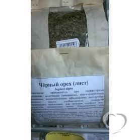 Орех чёрный / Juglans nigra