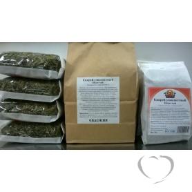 Иван-чай (Кипрей узколистный)  / Chamaenerion angustifolium L.