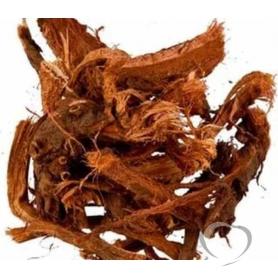 Красный корень (медвежий корень, копеечник) / Hedysarum neglectum Ledeb