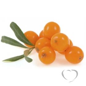 Облепиха плоды