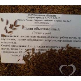 Тмин обыкновенный / Carum carvi L.