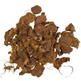 Родиола розовая (золотой корень) / Rhodiola rosea L.