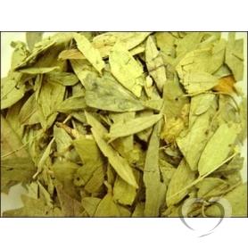 Сенна листья (Кассия остролистная, александрийский лист, андромеда) / Folia  Sennae